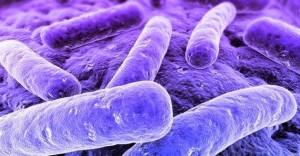 Mycoplasma Genitalium Infection