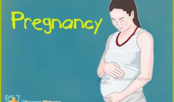 Precum Pregnant